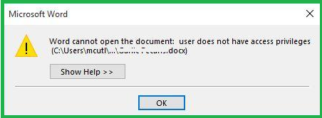 word cannot open the document