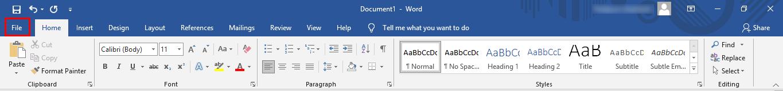 Haga clic en la opción de archivo