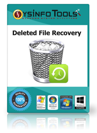 Deleted File Recovery